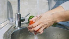 De vrouw wast tomaten stock video