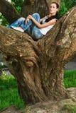 De vrouw zit op reusachtige boom i Stock Foto's