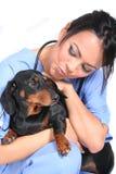 De vrouwelijke Arbeider van de Gezondheidszorg met Hond Stock Afbeelding