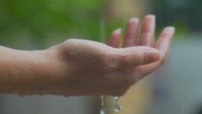 De vrouwelijke hand raakt een daling van regen stock video