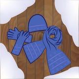 De vrouwelijke handschoenen van de hoedensjaal op een houten textuur Stock Afbeelding