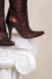 De vrouwelijke laarzen van het leer Stock Foto