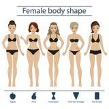 De vrouwelijke reeks van de lichaamsvorm Stock Foto