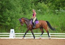 De vrouwelijke ruiter leidt het paard in de berijdende cursus op Stock Foto's
