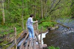 De vrouwelijke toerist gaat zorgvuldig op de houten brug door het rivierrood Het gebied van Kaliningrad stock fotografie