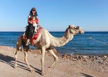 De vrouwelijke toerist met jong geitje berijdt een kameel Royalty-vrije Stock Fotografie