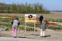 De vrouwen bezoeken de tulpen tonen centrum in Flevoland, Noordoostpolder, Nederland Royalty-vrije Stock Foto