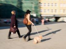 De vrouwen die met een hond onderaan de straat in motie lopen vertroebelen stock foto's
