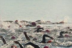 De vrouwen die in Open Water concurreren zwemmen Race Stock Foto's