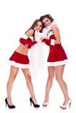 De vrouwen die van de kerstman samen spelen Stock Foto