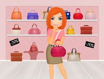 De vrouwen kopen handtassen Royalty-vrije Stock Foto