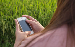 De vrouwen overhandigen het gebruiken van slimme telefoon Stock Afbeeldingen