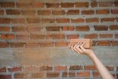 De vrouwen overhandigen het houden van een baksteen met bakstenen muurachtergrond royalty-vrije stock afbeelding