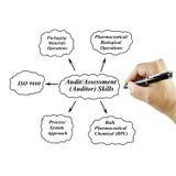 De vrouwen overhandigen het schrijven Controle/Beoordelings (Auditor) Vaardigheid voor bedrijfsconcept Stock Afbeeldingen