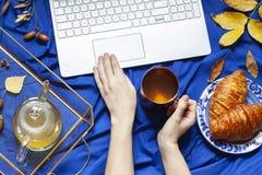 De vrouwen` s handen houden een kop thee terwijl het werken aan de computer De diepe blauwe vlakte van het de herfstconcept lag stock foto