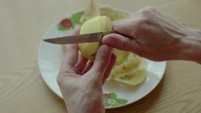 De vrouwen s overhandigt schone aardappels stock videobeelden