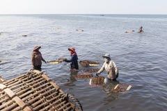 De vrouwen van de krabvisser in Kep, Kambodja royalty-vrije stock afbeelding
