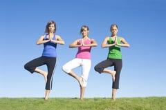 De Vrouwen van de yoga en van de Oefening Stock Afbeeldingen