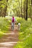 De vrouwengangen met een hond Stock Afbeelding