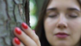 De vrouwenhanden die boom, wijfje houden voelt boompijn, verouderend verminderend bomen stock footage