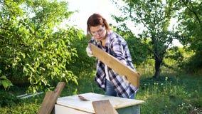 De vrouwentimmerman krast oude houten plank met metaalborstel in zonnige tuin stock footage
