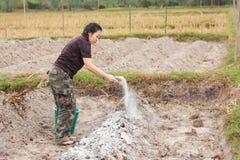 De vrouwentuinlieden zetten kalk of calciumhydroxyde in de grond om de zuurheid van de grond te neutraliseren royalty-vrije stock fotografie