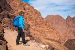 De vrouwenwandelaar met rugzak geniet van mening in woestijn royalty-vrije stock afbeelding