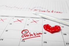 De vruchtbare dagen voor vatten en zwangerschap in kalender op De test van de onvruchtbaarheidscyclus stock foto's