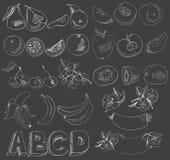 de vruchten, bessen, bloemen schilderden witte lijnen op een zwarte achtergrond stock illustratie