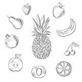 De vruchten bessen schetsen reeks Royalty-vrije Stock Foto