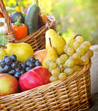 De vruchten en de groenten van de herfst Stock Foto