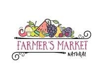 De vruchten en de groenten, de vegetarische Markt van de bannerlandbouwer ` s, isoleerden kleuren vectorpictogrammen royalty-vrije illustratie