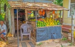 De vruchten in Sri Lanka Royalty-vrije Stock Fotografie
