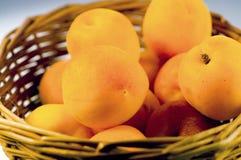 De vruchten van de abrikoos Royalty-vrije Stock Afbeelding