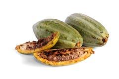 De vruchten van de cacao Royalty-vrije Stock Afbeelding