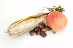 De vruchten van de herfst Stock Foto's