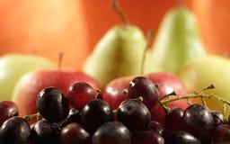 De vruchten van de kleur - druiven, appelen en peren Royalty-vrije Stock Afbeeldingen