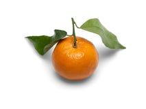 De vruchten van de mandarijn. Stock Afbeelding