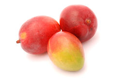 De vruchten van de mango Royalty-vrije Stock Afbeeldingen