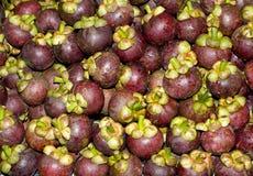 De vruchten van de mangostan stock foto