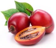De vruchten van de tamarillo met bladeren Stock Afbeeldingen