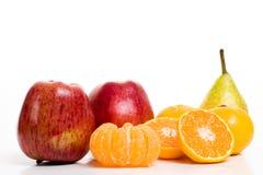 De vruchten van de winter stock fotografie