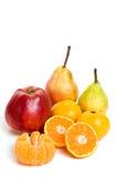 De vruchten van de winter royalty-vrije stock foto