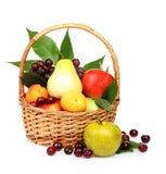 De vruchten van de zomer Stock Foto's