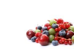De vruchten van de zomer Stock Afbeeldingen