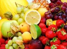 De vruchten van de zomer Stock Foto