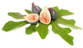De vruchten van fig. Stock Foto's