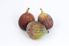 De vruchten van fig. Stock Fotografie