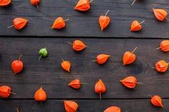 De vruchten van de herfstphysalis achtergrond, exotisch voedsel royalty-vrije stock afbeeldingen