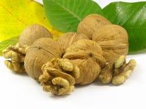 De vruchten van noten stock afbeeldingen